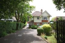 3 bed Detached home in WATERLOOVILLE