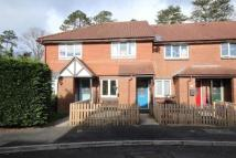 2 bed End of Terrace house to rent in Ringwood