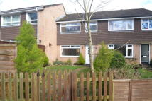 3 bed Terraced property to rent in Bingham Drive, Verwood