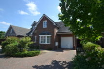 4 bedroom Detached house to rent in Ringwood