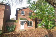 Detached property to rent in The Mount, Ringwood