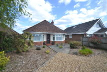2 bed Detached Bungalow to rent in Ringwood