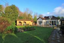 Detached Bungalow for sale in New Denham...