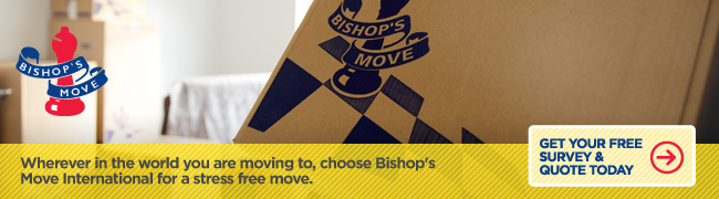 Bishop's Move