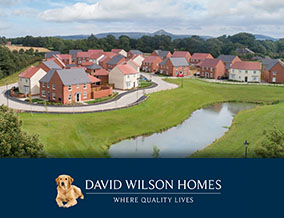 Get brand editions for David Wilson Homes North East