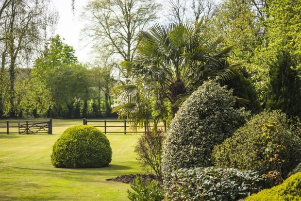6 bedroom detached house for sale in little hallingbury - Swimming pools in bishops stortford ...
