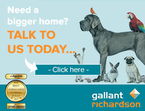 Get brand editions for Gallant Richardson, Colchester - Lettings