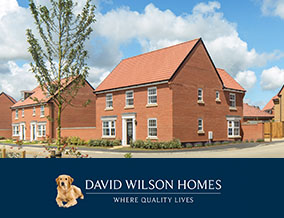 Get brand editions for David Wilson Homes, Bure Meadows