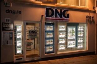 DNG, Stillorganbranch details