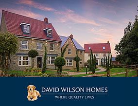 Get brand editions for David Wilson Homes, Park Farm