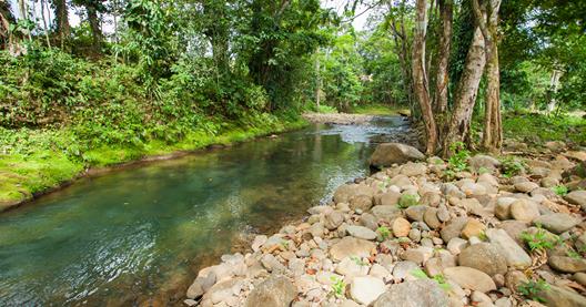 Plot for sale in Alajuela