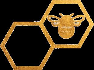 Bees Homes, Eastbournebranch details