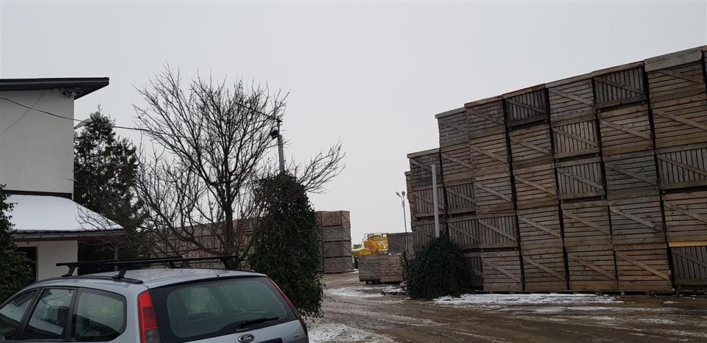 Land for sale in Dâmbovita, Tartasesti