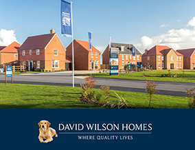 Get brand editions for David Wilson Homes, Mill Springs