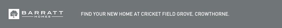 Get brand editions for Barratt Homes, Cricket Field Grove