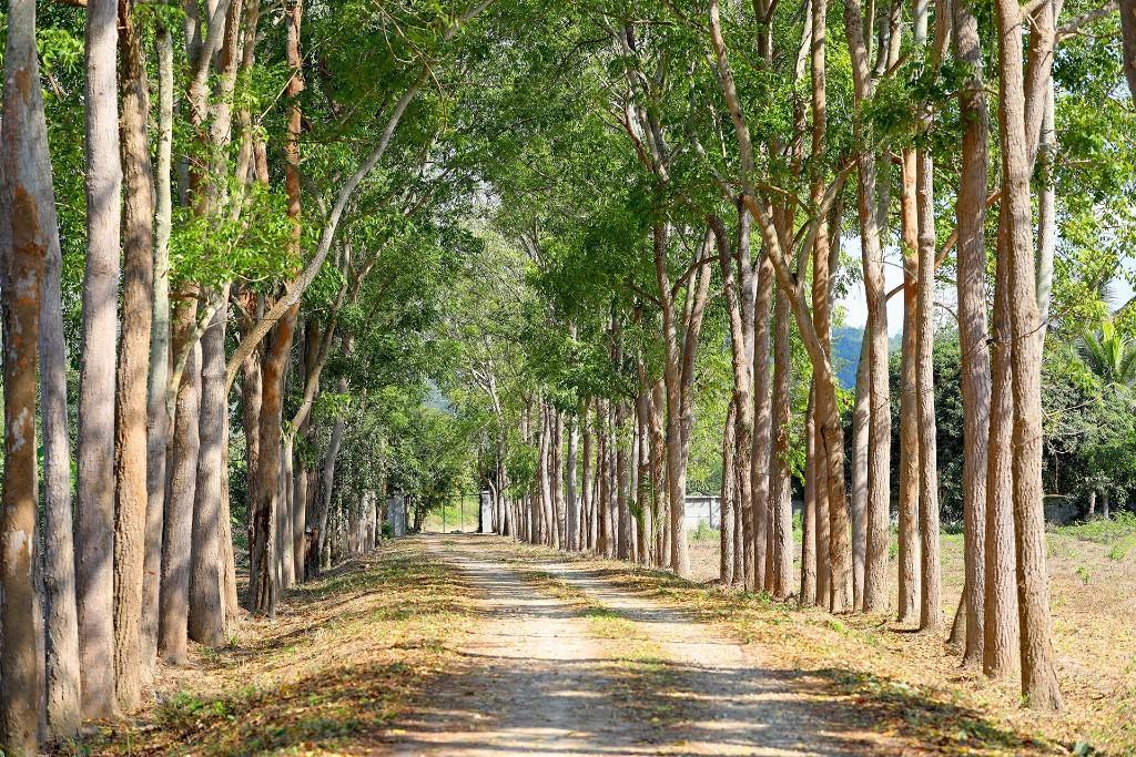 Land for sale in Kanchanaburi