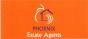 Phoenix Estate Agents, Minehead
