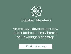 Get brand editions for Edenstone Homes, Llanfair Meadows