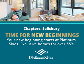 Get brand editions for Platinum Skies