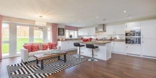 Bellway Homes (Wessex)development details