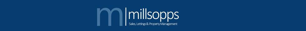 Get brand editions for Millsopps, Kings Lynn