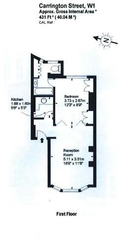 431 sq ft