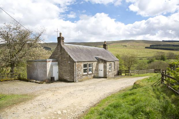 Land For Sale In Larriston Farm Newcastleton
