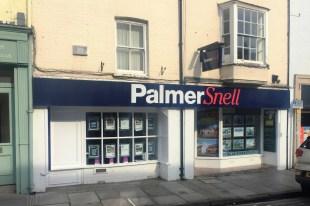 Palmer Snell, Wellsbranch details