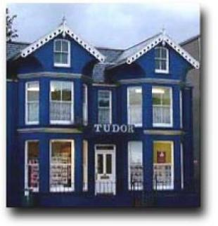 Tudor Estate Agents, Pwllhelibranch details