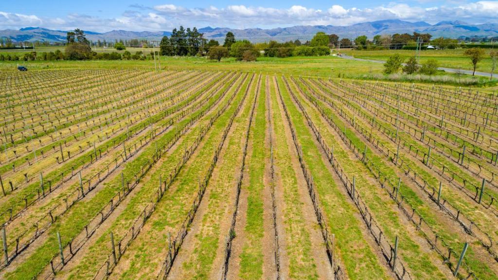 Land in Marlborough
