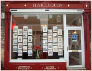 Harlequin, Selbybranch details