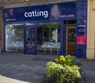 Catling & Co, Surreybranch details
