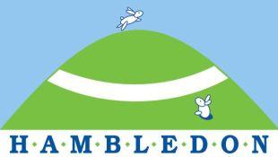 Hambledon Estate Agents, Shaftesburybranch details