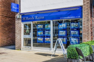 Reeds Rains Lettings, Formbybranch details