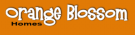 Orange Blossom Homes, Valencia logo