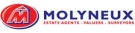 Molyneux, Mold branch logo