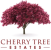 Cherry Tree Estates, Chew Magna