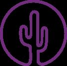 Purple Cactus Properties, Worcester