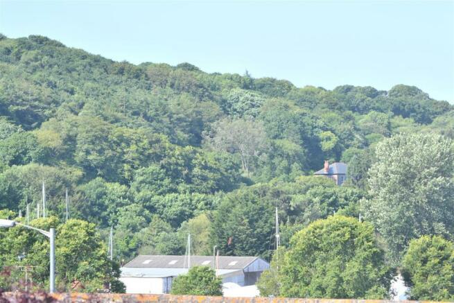 Zoom rural view.JPG