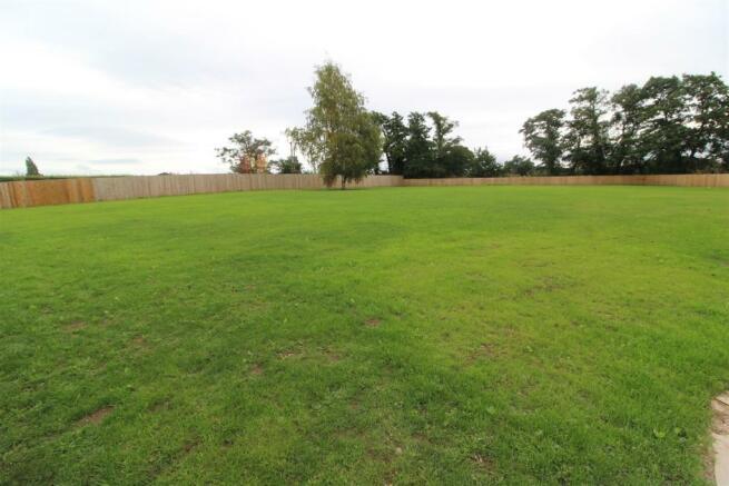 rear lawn.JPG