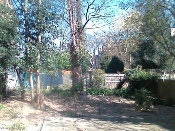 6 Tierney Road Garden.JPG