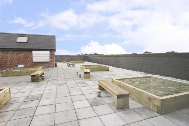 Communal Roof Garden