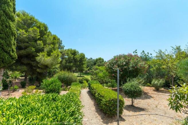 communitty garden