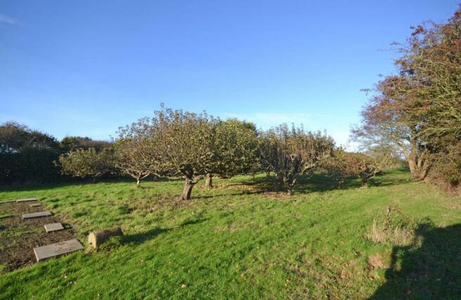 Garden (Orchard Area