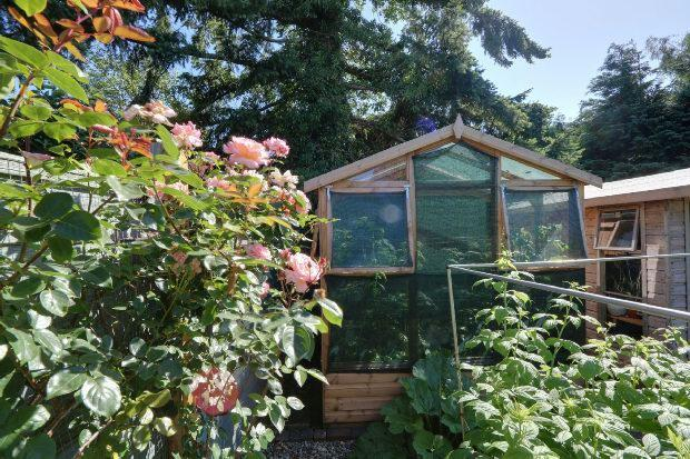 Greenhouse Potting S