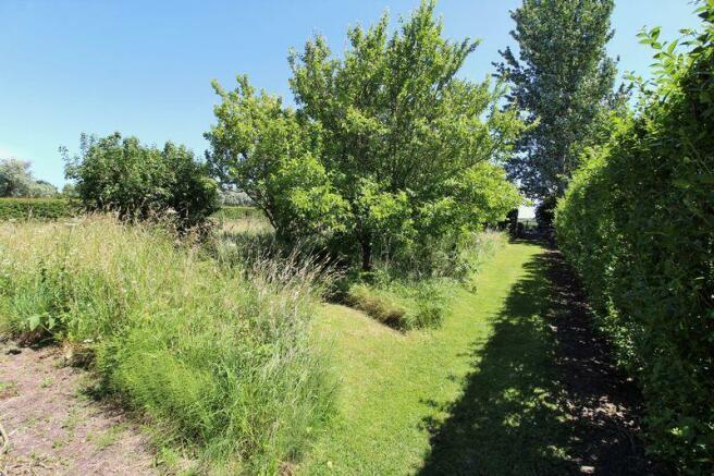 Orchard / Paddock