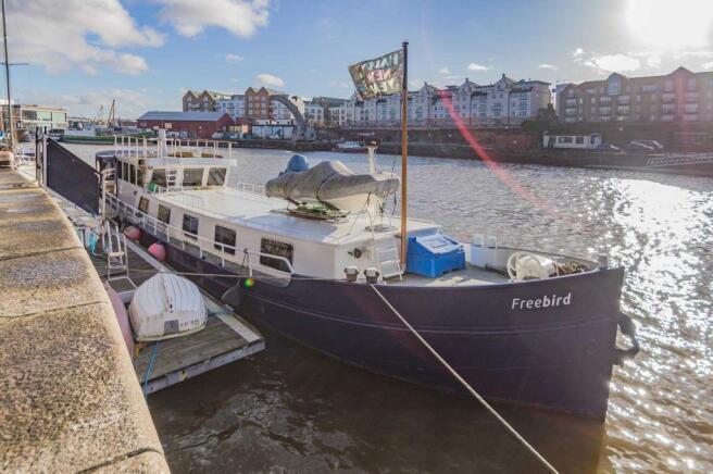 Freebird Harbour 001
