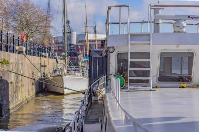 Freebird Harbour 019