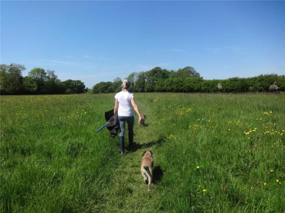 Stroll To Bewl