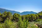Charming property surrounded by pine trees and olive trees on the outskirts of Sóller